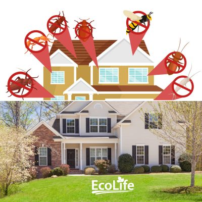 ecolife_pestcontrol_lawncare_utah_spring_summer_fall_winter_residential_peaceofmind3