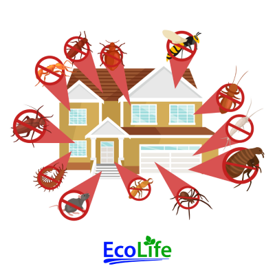 ecolife_pestcontrol_utah_spring_summer_fall_winter_residential_5